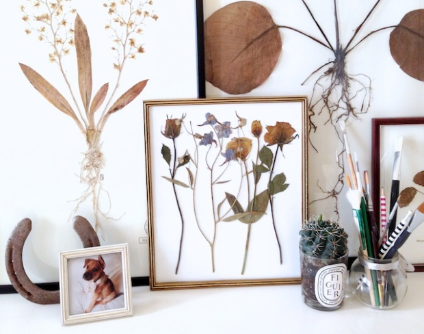 how-to-press-flowers-botanicals-9